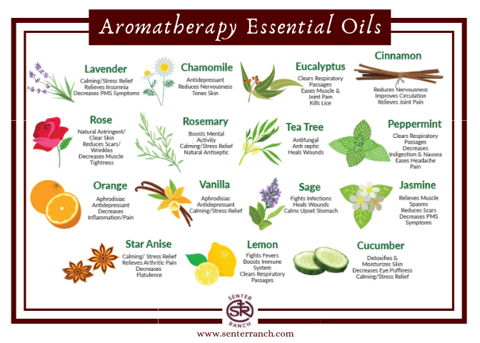 Aromatherapy Essential Oils.png
