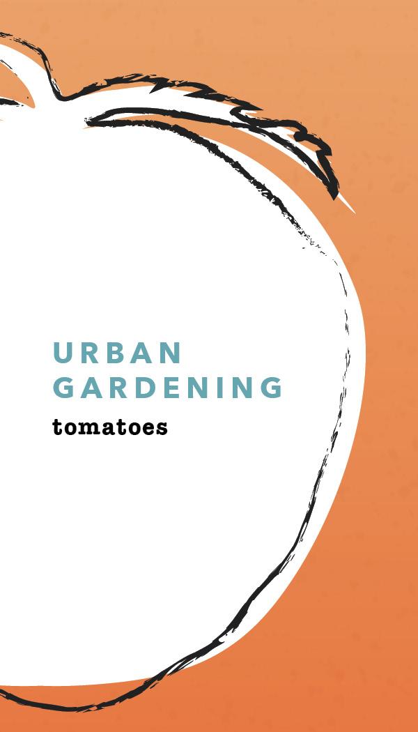 TomatoInstructions.jpg