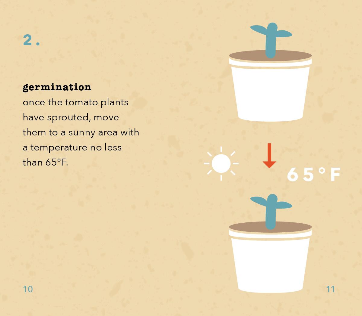 TomatoInstructions6.jpg