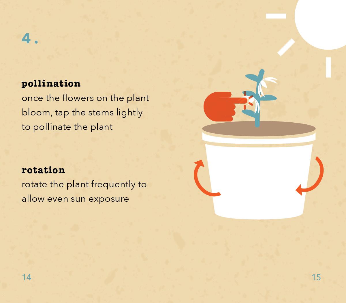 TomatoInstructions8.jpg