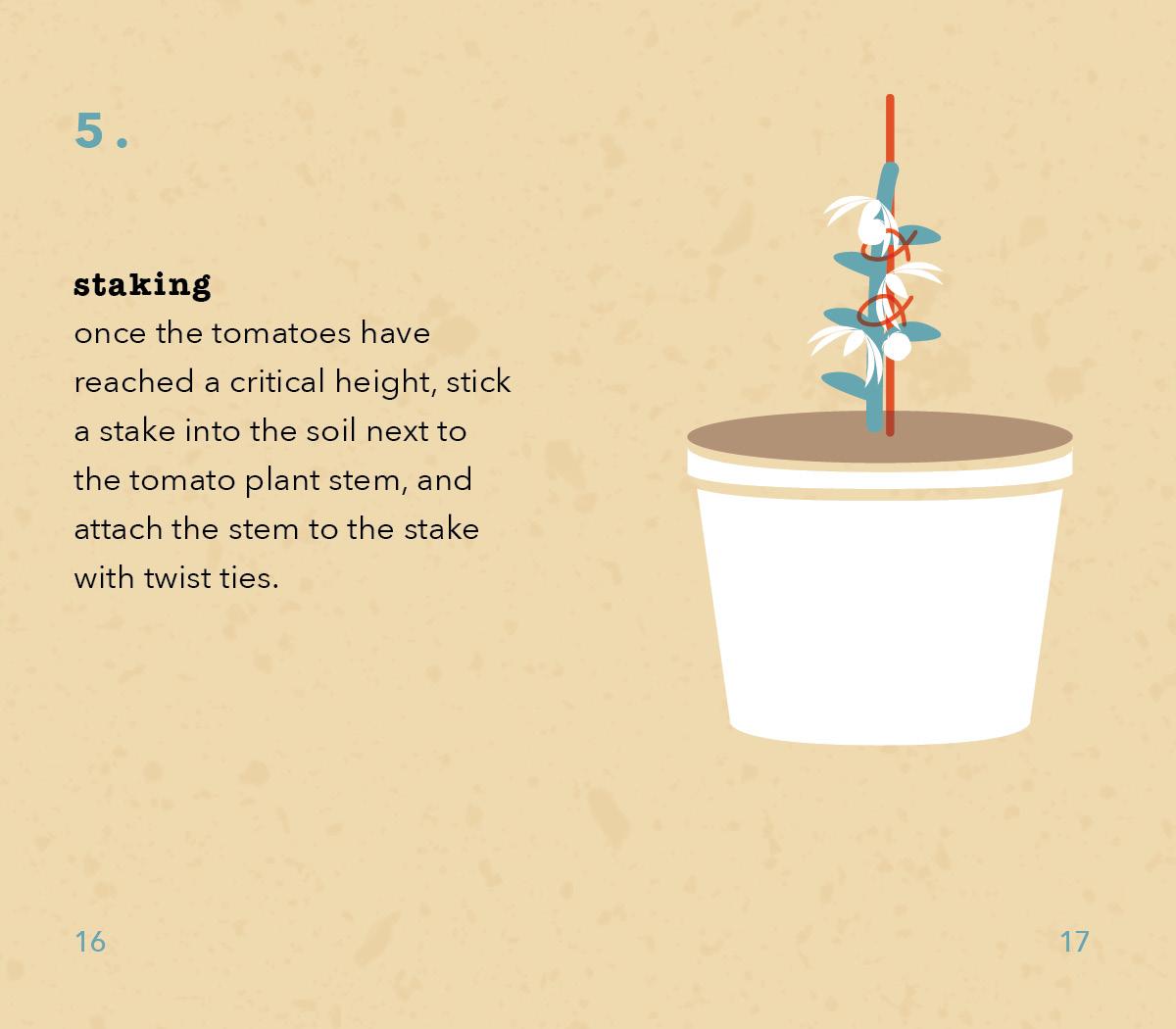 TomatoInstructions9.jpg