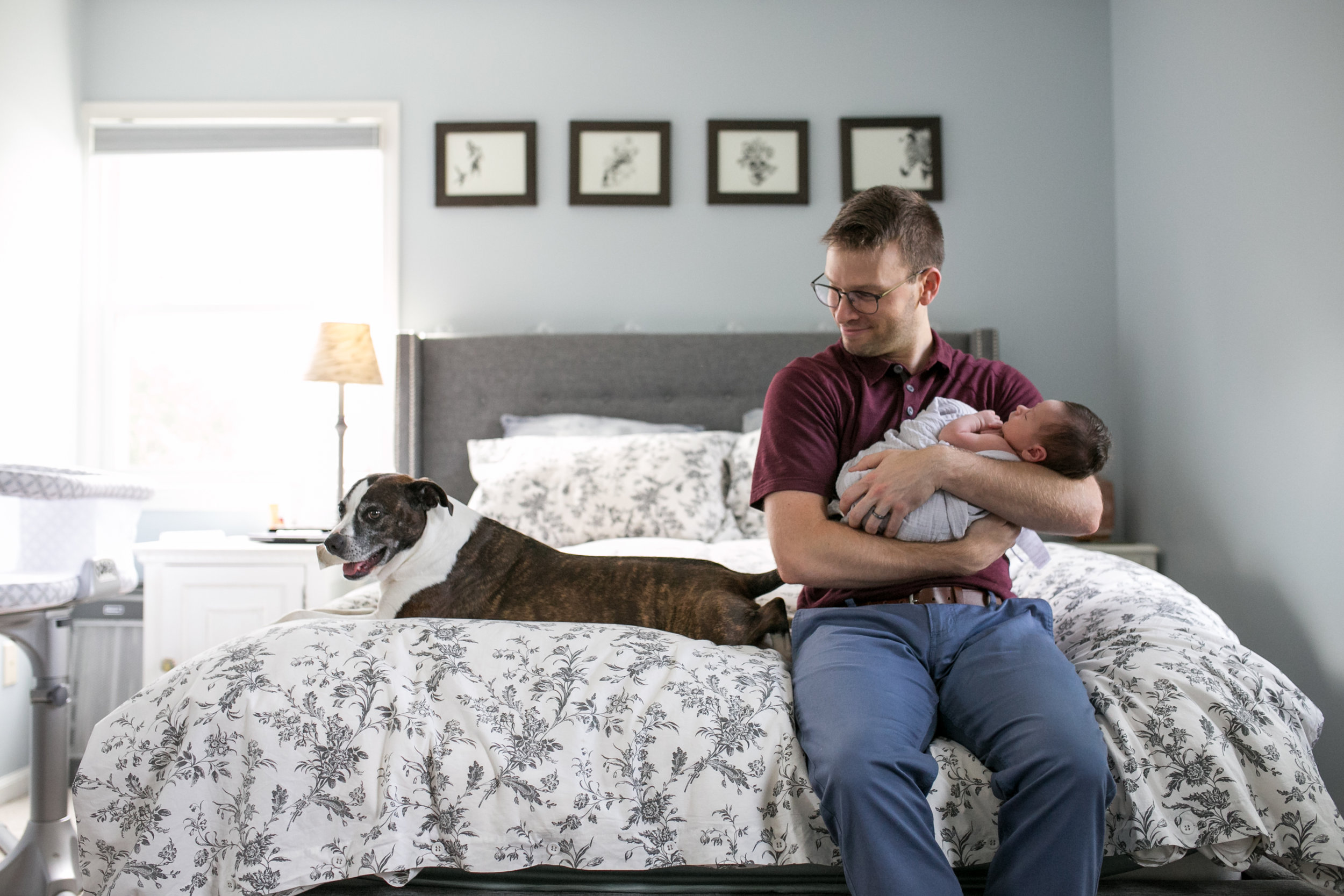 dad, baby and dog photo