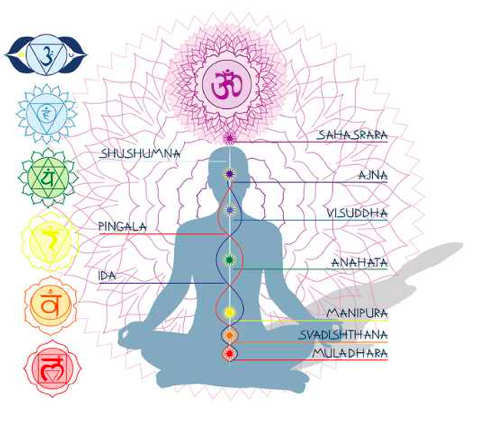 Sound Blog (5) Chakras and Nadis.png