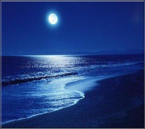 pitta blog moonlight.jpg