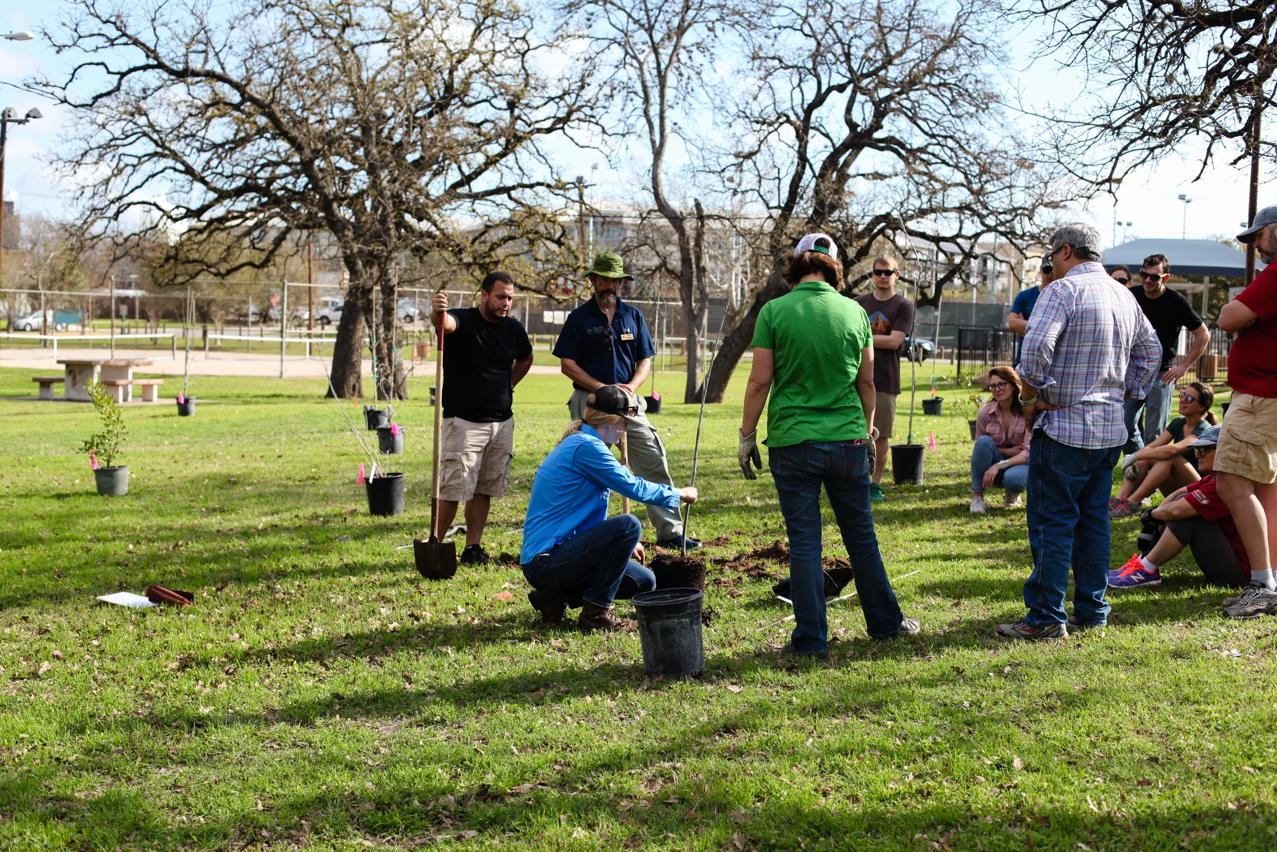 Volunteers plant trees at restoration event led by Tree Folks in Austin, Texas. Photo credit: Tree Folks.