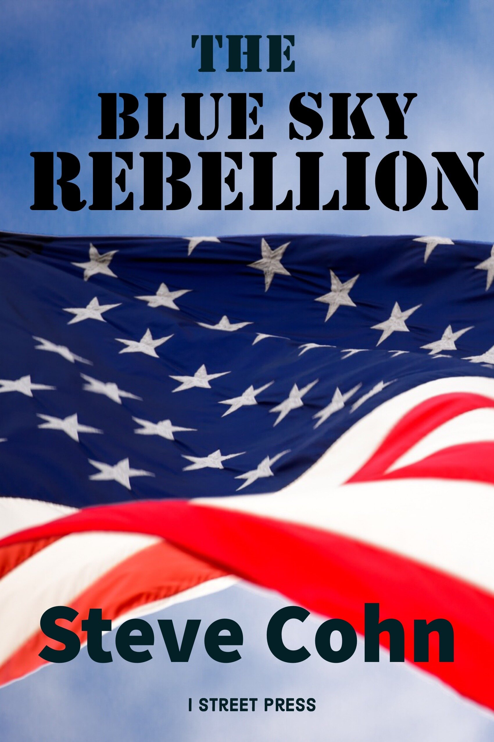 The Blue Sky Rebellion - Coming in November, the political thriller that everyone who cares about the future of our country and our planet must read before the 2020 presidential election.