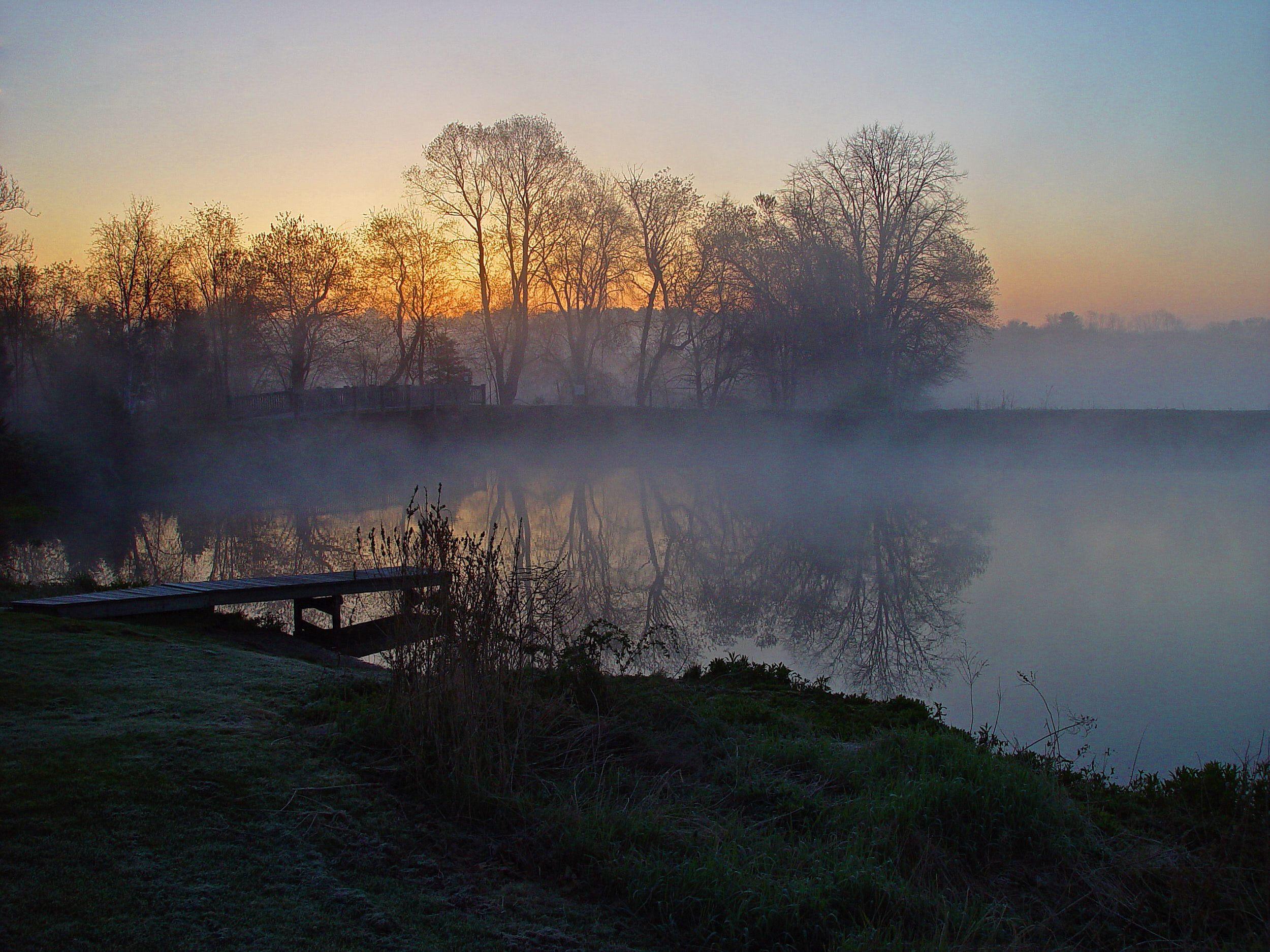 BWPond Mist Sunrise 2-Edit-2.jpg