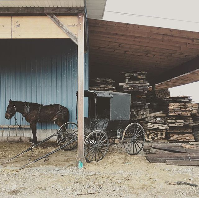 We go the extra mile to find the best quality wood. Some time that takes us to small places where the way of life haven't change a bit. Rain or shine these guys travel with horse and buggy. • • • #copeandstick #reclaimed #repurpose #recycle #upcycle #millwork #metal #steel #art #wood #workflow #design #custom #handmade #supportsmallbusiness #fabrication #fab101 #craftsmen #charlotte #nc #ctl #qc #oak #Vintagelumberyard #handmade #reclaimedwood #beams #designinspo #interiorinspiration