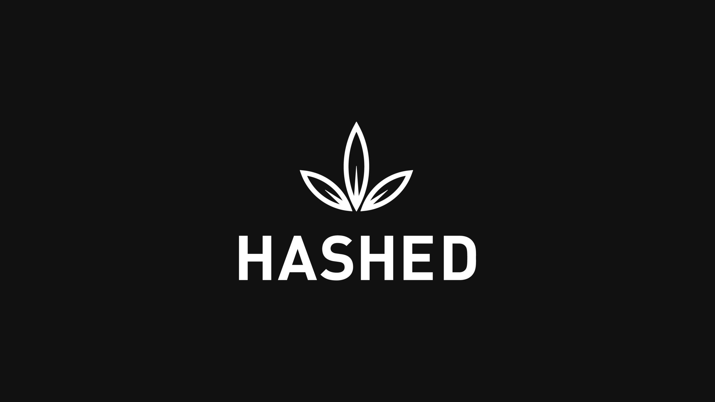 Hashed  - Brand Identity & Packaging Design