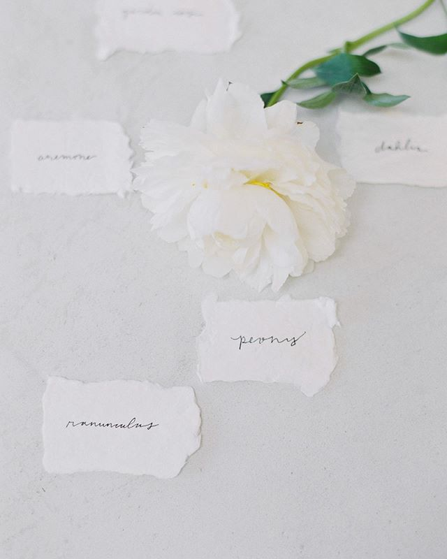 Handwritten names of some of my favorite blooms. 🌿 To me, there's something so special about handwritten things: almost like a piece of the writer's heart is displayed. Unique + handcrafted + intentional. // also, that bloom is from my mamas garden. 😍 . . Photography @betsyblue  Handmade Paper @farmettepress . . #wedding #brandingdesign #weddingplanner #oregonwedding #californiawedding #weddingflorist #floraldesign #dailybloom #seekjoy #simple #minimaldesign