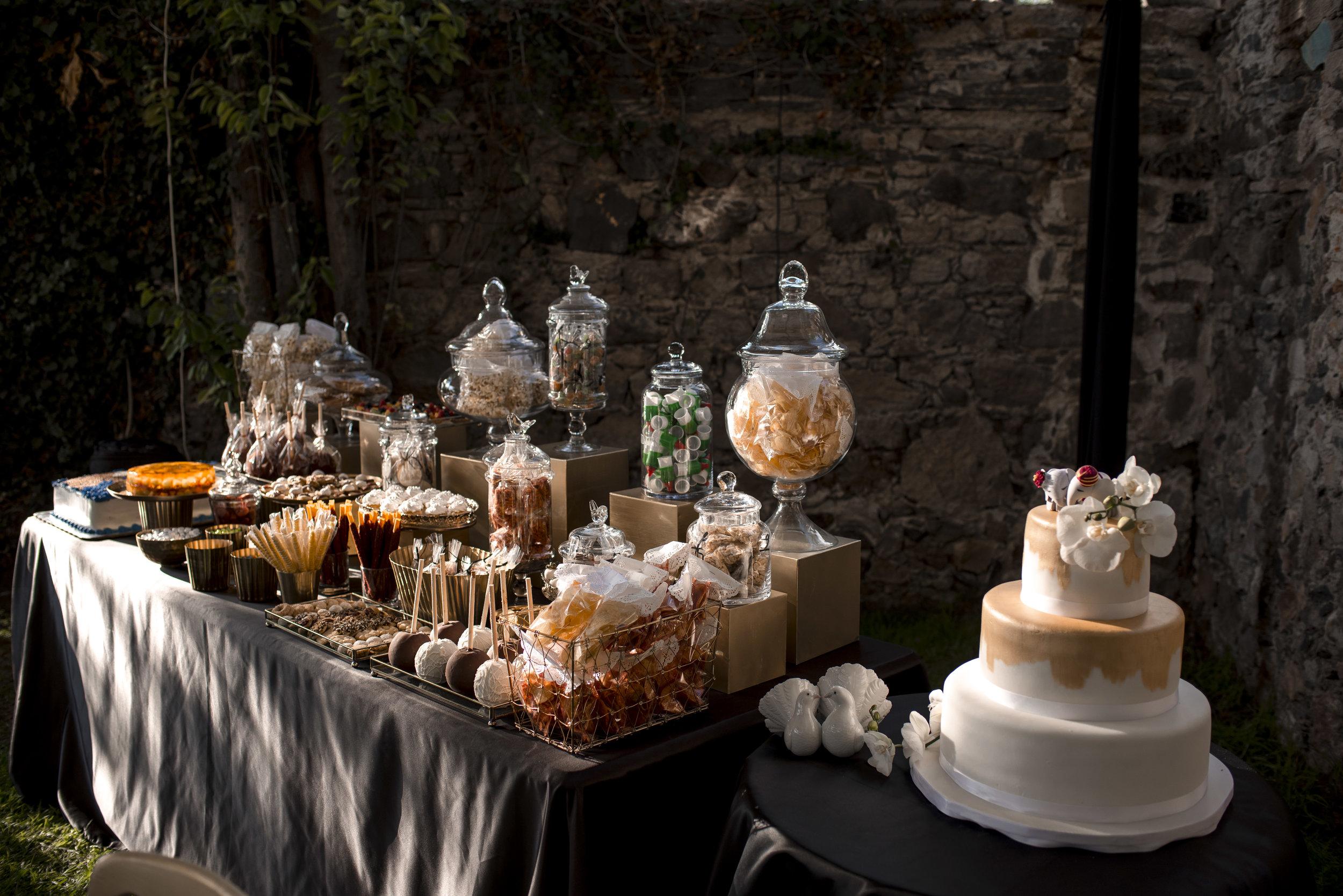 indian_wedding_san_miguel_de_allende_anita_amit (188).jpg
