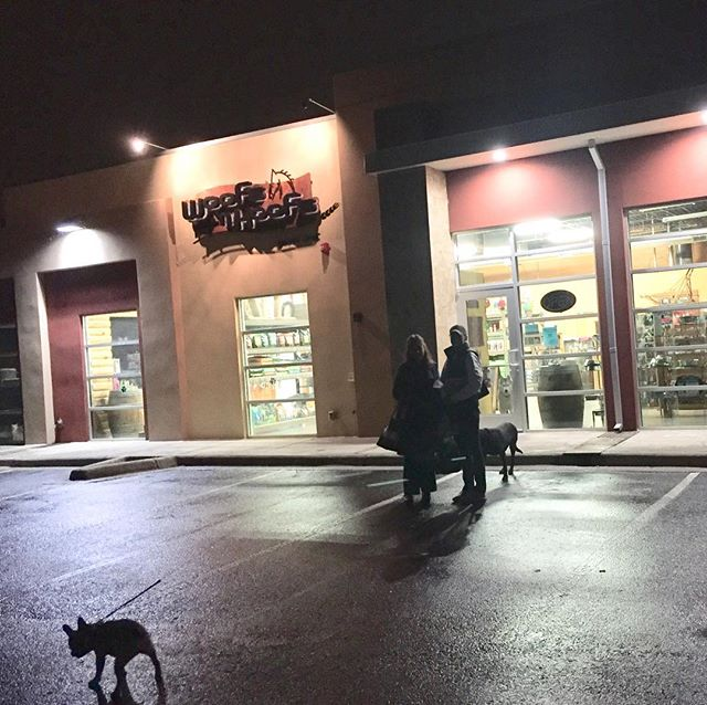 Happy December! Would you like help with your dog? We open at 9:00am on Saturdays and close at 5:00pm. Come use our self serve dog wash or learn how to care for your #cat, #dog, and #horse and other #pet #education #supplies!  Eye-Spy Game: How many dogs and cats are in this photo? Winners receive 10% Discount from any toy in the store!