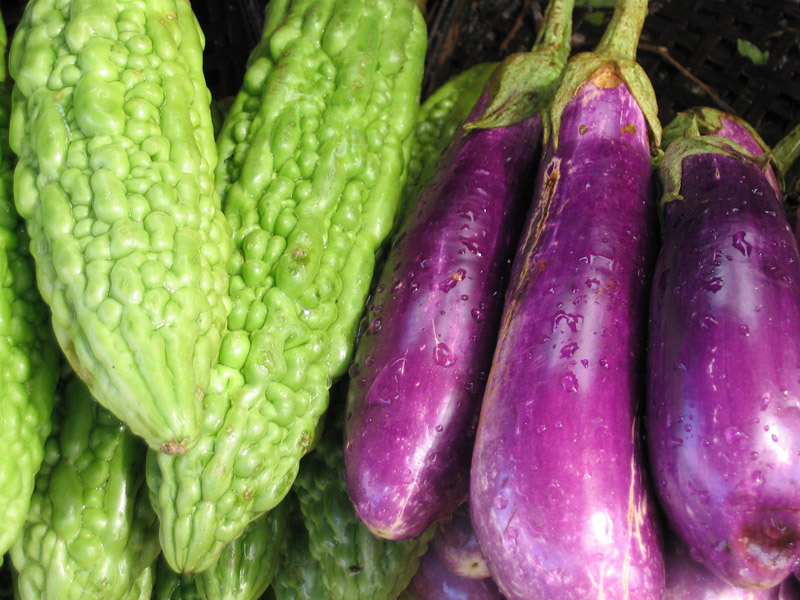 Ayurvedic Recipes_Indian Eggplants and Bitter Gourds in Poppy Seed Sauce.jpg
