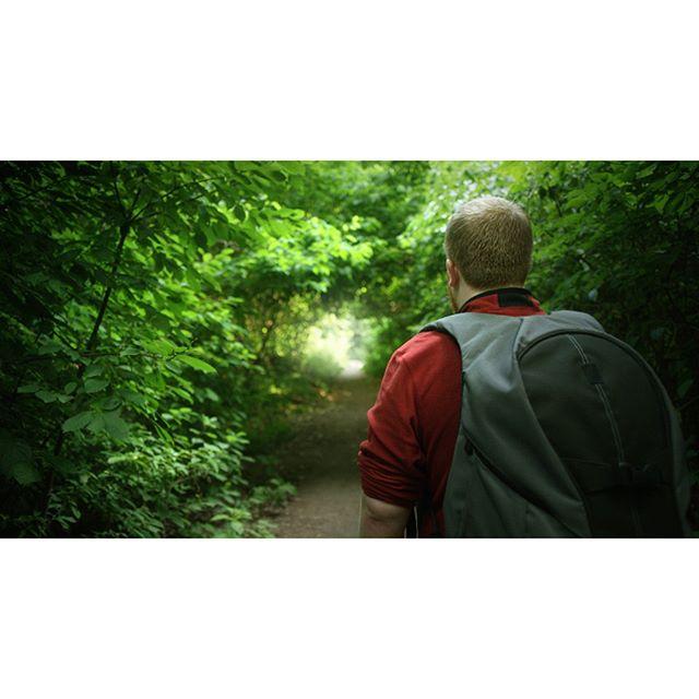 Forest Path to El Dorado⠀ _______________________________________________________⠀ #backpackingculture #ig_great_pics #welivetoexplore #centralparknyc #travelstagram #stayandwander #passionpassport #livefolk #globe_visuals #lifeofadventure #adventureanywhere #getoutstayout #lensbible #adventureculture #travelgram #wanderlust #nycgo #hikersofinstagram #wanderlust #lonelyplanet #optoutside #getoutstayout #discoverearth #wanderlusting #getoutside #seeyourcity #artofvisuals #vczomood #postcardsfromtheworld #peoplewhohike⠀