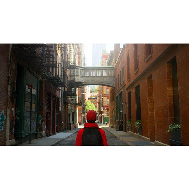 Filmmaking at Staple Street⠀ _______________________________________________________⠀ #skybridge #staplestreet #seeyourcity #newyorkcity #symmetry #davinciresolve #tribeca #rsa_streetview #passionpassport #nyc #city_features #lifeofadventure #adventureanywhere #oftheafternoon #lensbible #streetshared #travelgram #streetleaks #nycgo #total_city #capturestreets #streets_vision #urbanandstreet #streets_storytelling #aspfeatures #iloveny #spicollective #urbanphotography #postcardsfromtheworld #timeless_streets⠀