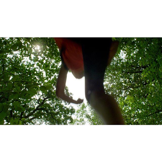 Chipmunk's Eye View⠀ _______________________________________________________⠀ #forest_masters #getoutside #wanderlusting #antseyeview #adventureculture #neverstopexploring #naturelovers #greettheoutdoors @riversideparknyc #optoutside #artofvisuals #thecreatorclass #createcommune #liveoutdoors #travelingourplanet #thinkverylittle #ifyouleave #lensculture #onbooooooom #special_shots #goexplore #hikersofinstagram #wanderfolk #peoplewhohike #peoplescreative #liveofadventure #liveoutdoors #keepexploring #folkgreen #wanderer #rsa_outdoors