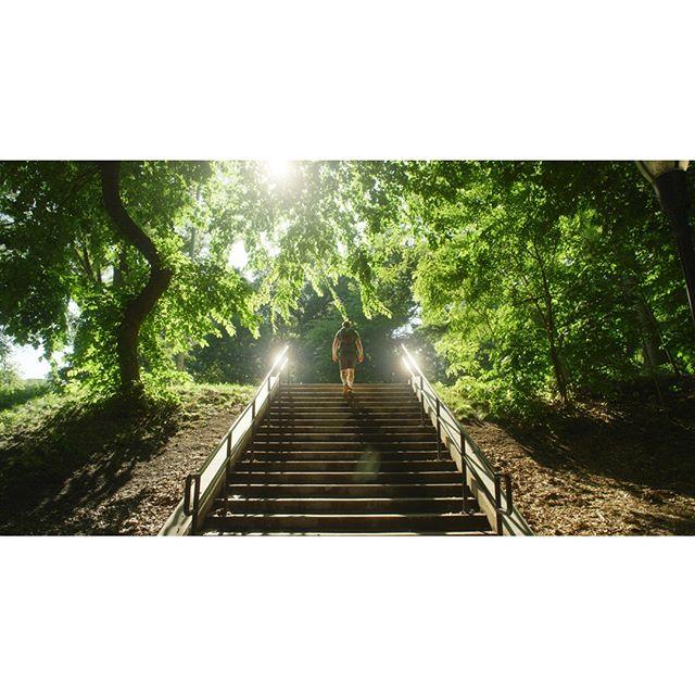 Stairway to the Sun⠀ _______________________________________________________⠀ #stairway #neverstopexploring #lifeofadventure #getoutside #eclectic_shotz #travelstagram #cinematicphotography #artofvisuals #cinebible #thecreatorclass #createcommune #createexploretakeover #ig_great_pics #thinkverylittle #passionpassport #lensculture #liveoutdoors #placetovisit #myfeatureshoot #special_shots #wanderfolk #milliondollarvisuals #peoplescreative #liveofadventure #welivetoexplore #keepexploring #globe_visuals #shotzdelight #tree_shotz #folkgreen