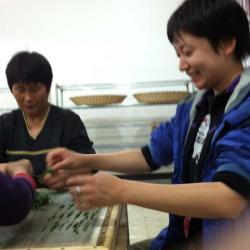 Hand making Hou Kui in Taiping