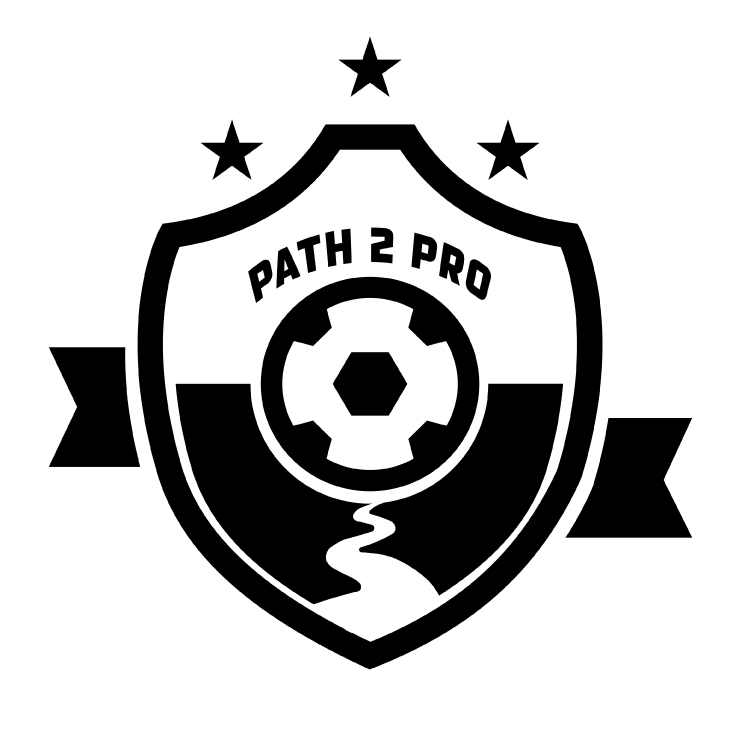 Path2proLogo_small.jpg