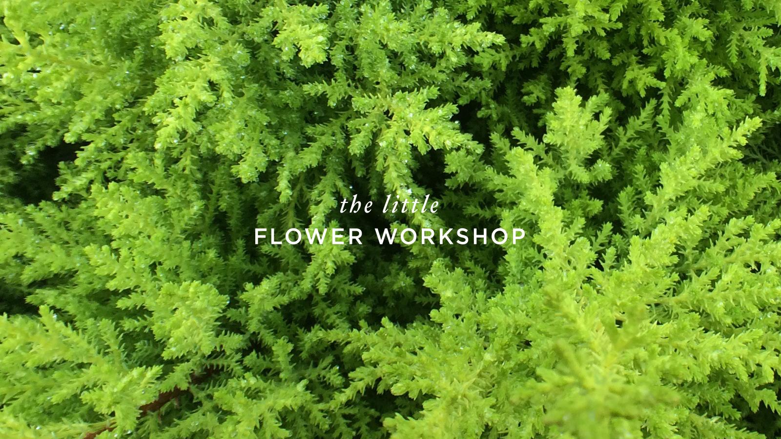 The-Little-Flower-Workshop-Logo-Designed-By-ALSO-Agency-2