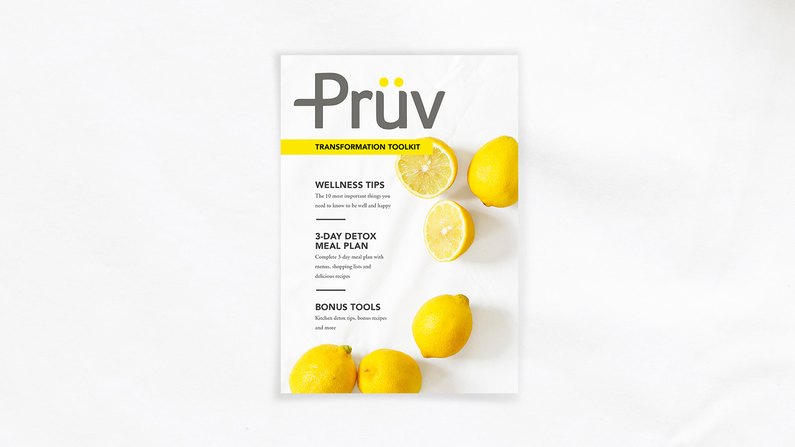Pruv-Transformation-Toolkit-Cover-Designed-By-ALSO-Agency