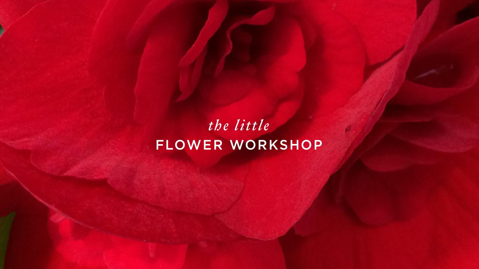 The-Little-Flower-Workshop-Logo-Designed-By-ALSO-Agency