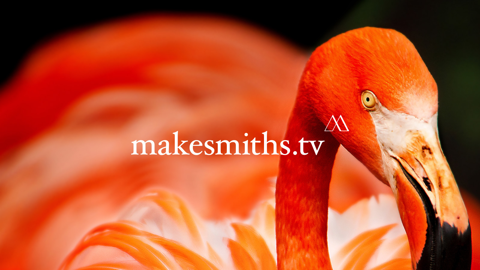 makesmiths-by-also-agency-6.jpg