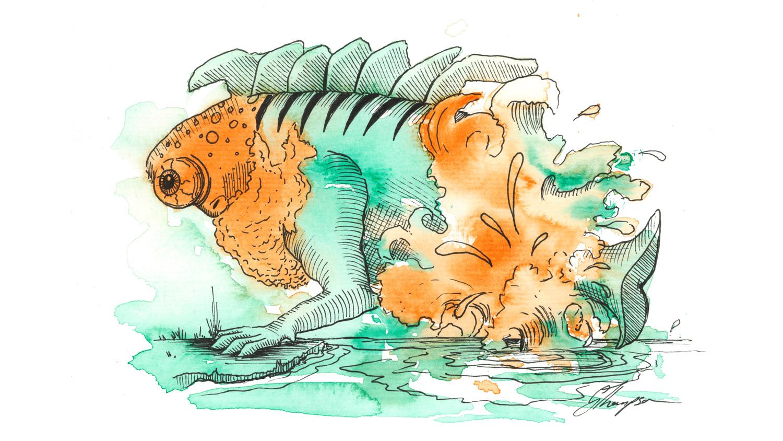blog-20-Days-tiger-fish.jpg