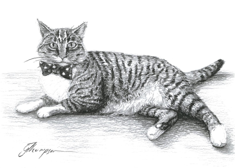 gallery-drawing-emma-moore.jpg