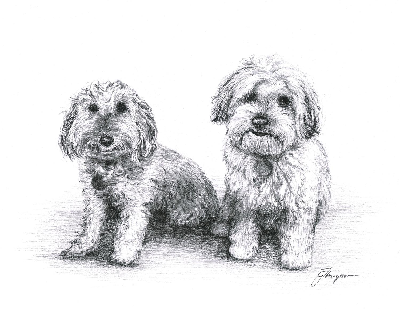 gallery-drawing-troy-bailey.jpg