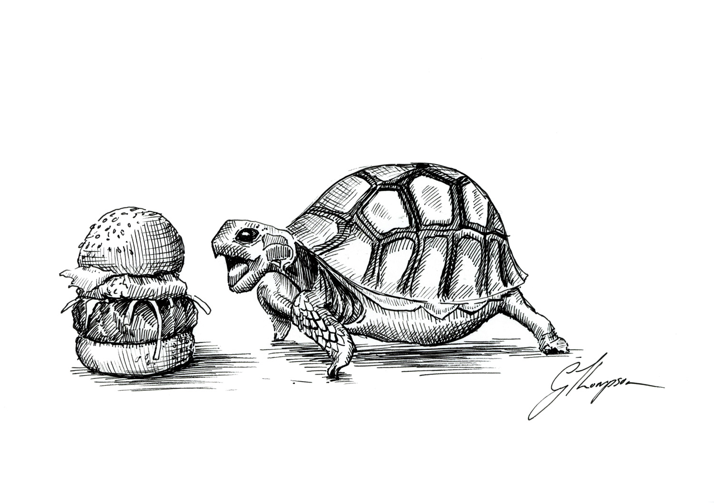 Turtle Diet - SOLD