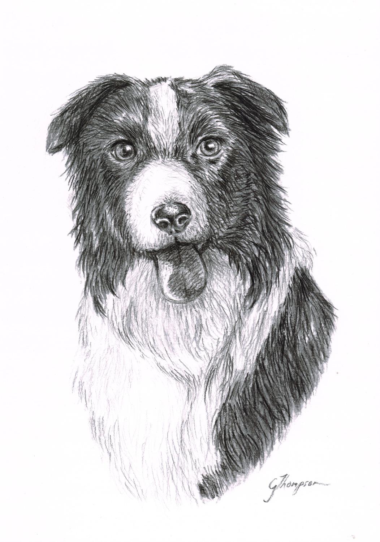 gallery-drawing-lochie.jpg