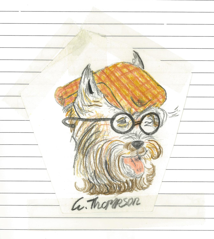 Scotty dog, aged 11 years.