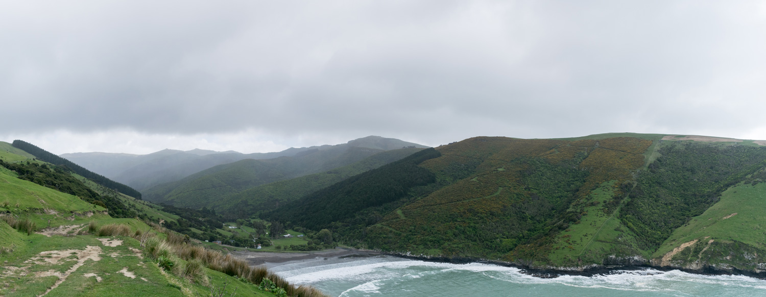 blog-hinewai-artist-retreat-headland-7.jpg