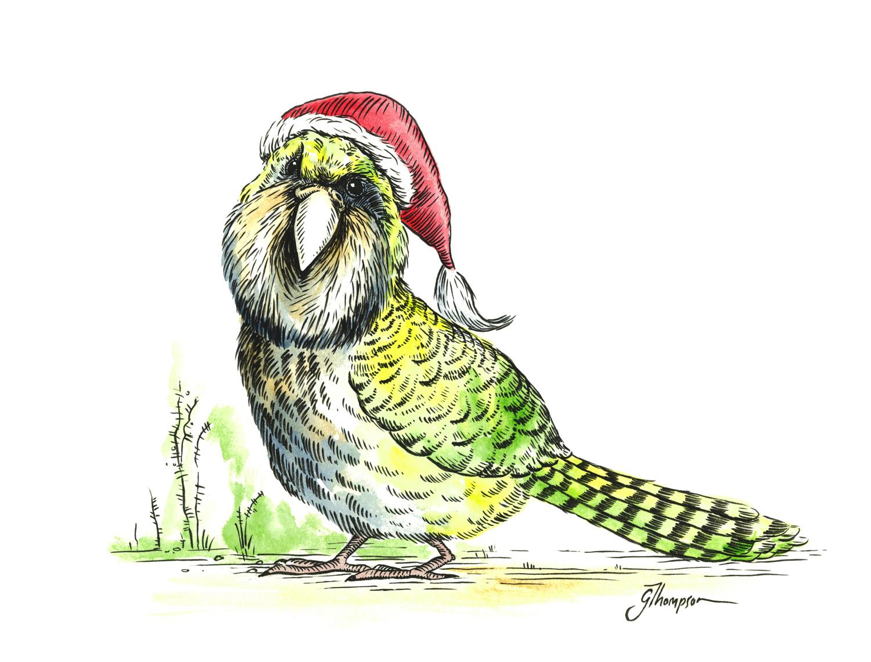 blog_christmas_card_kakapo_art.jpg
