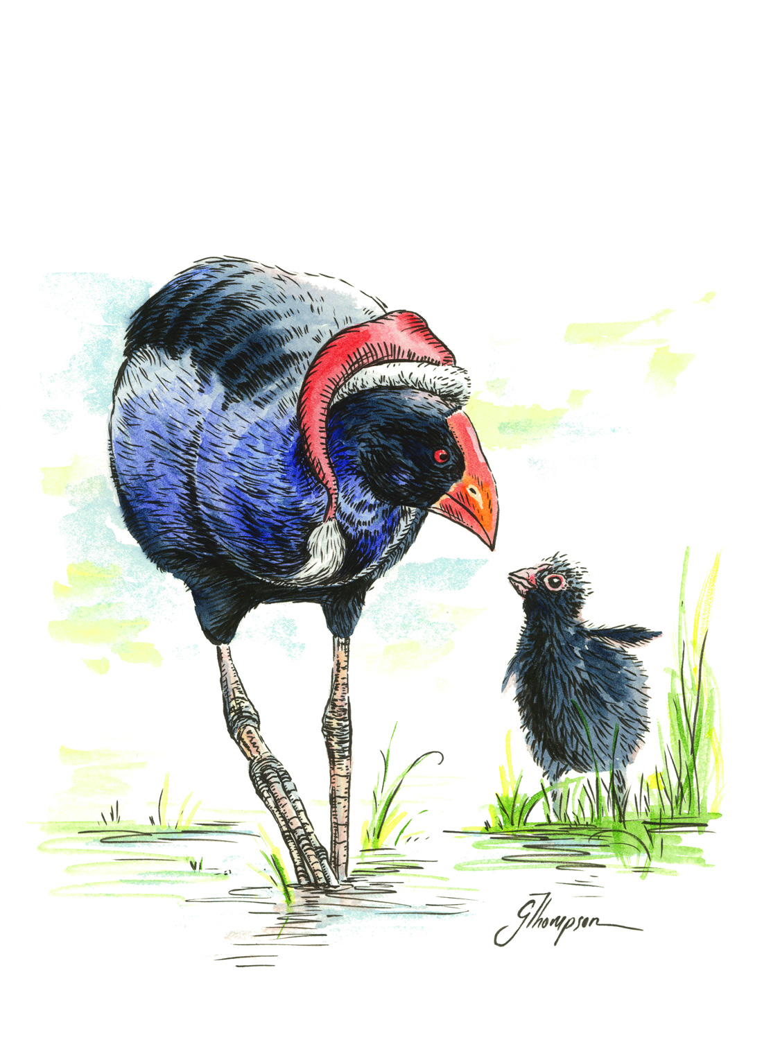 blog_christmas_card_pukeko_art.jpg