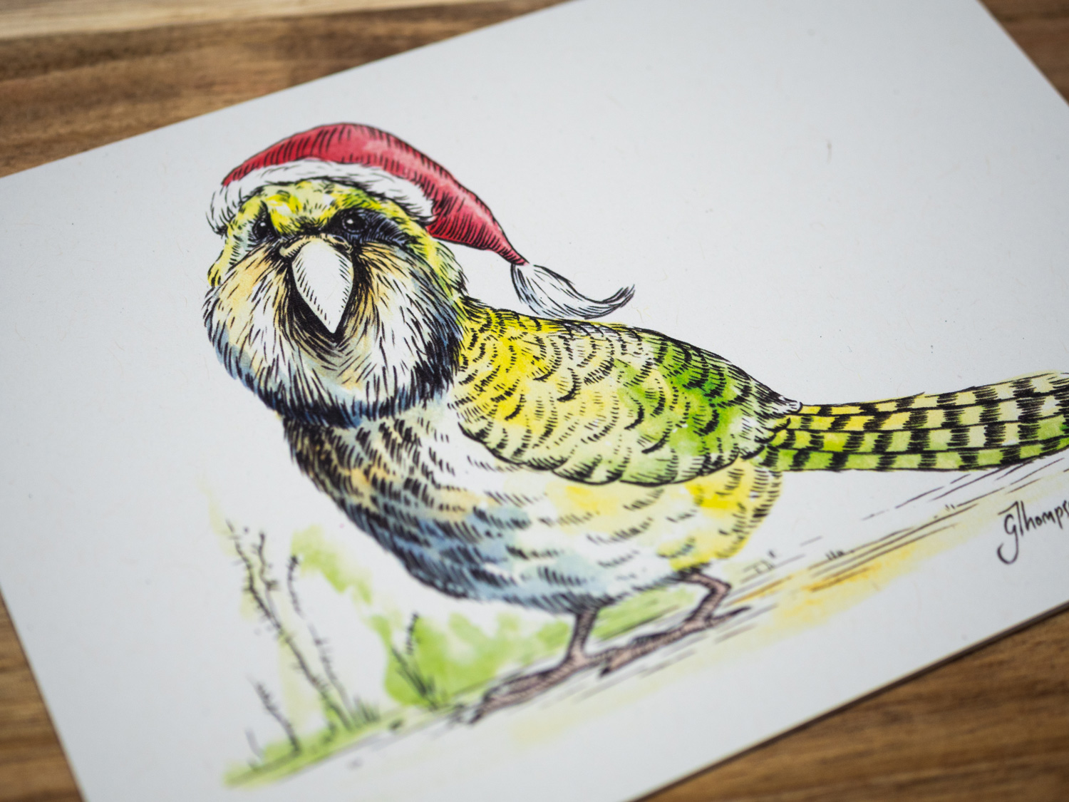 shop-christmas-cards-single-kakapo-detail.jpg