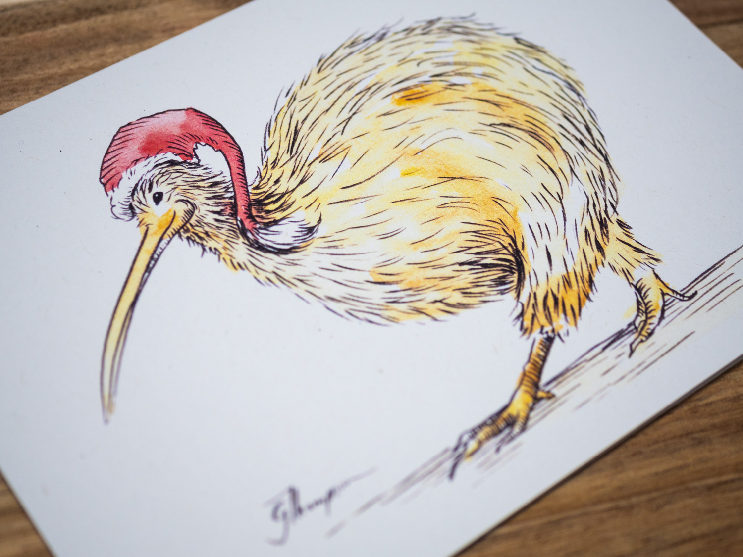 shop-christmas-cards-single-kiwi-detail.jpg