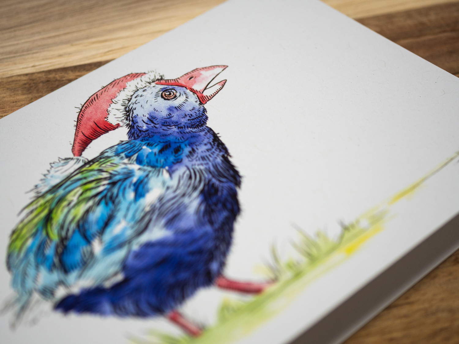 shop-christmas-cards-single-takahe-detail.jpg