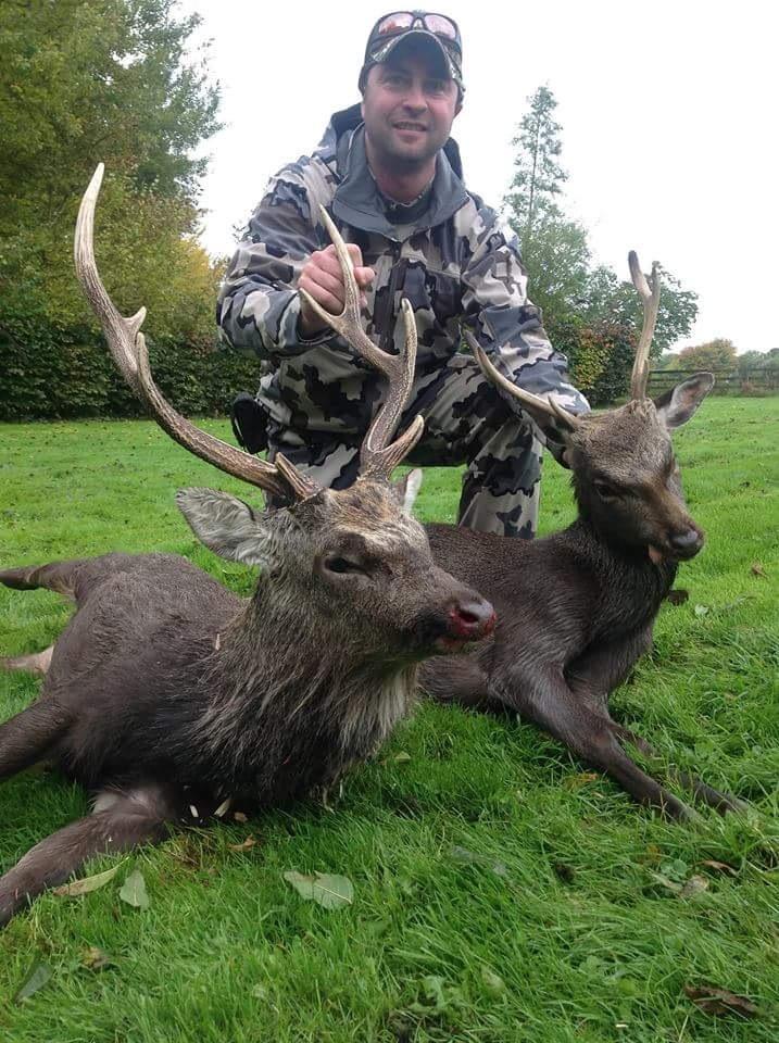 Sika Hunting Ireland (16).JPG