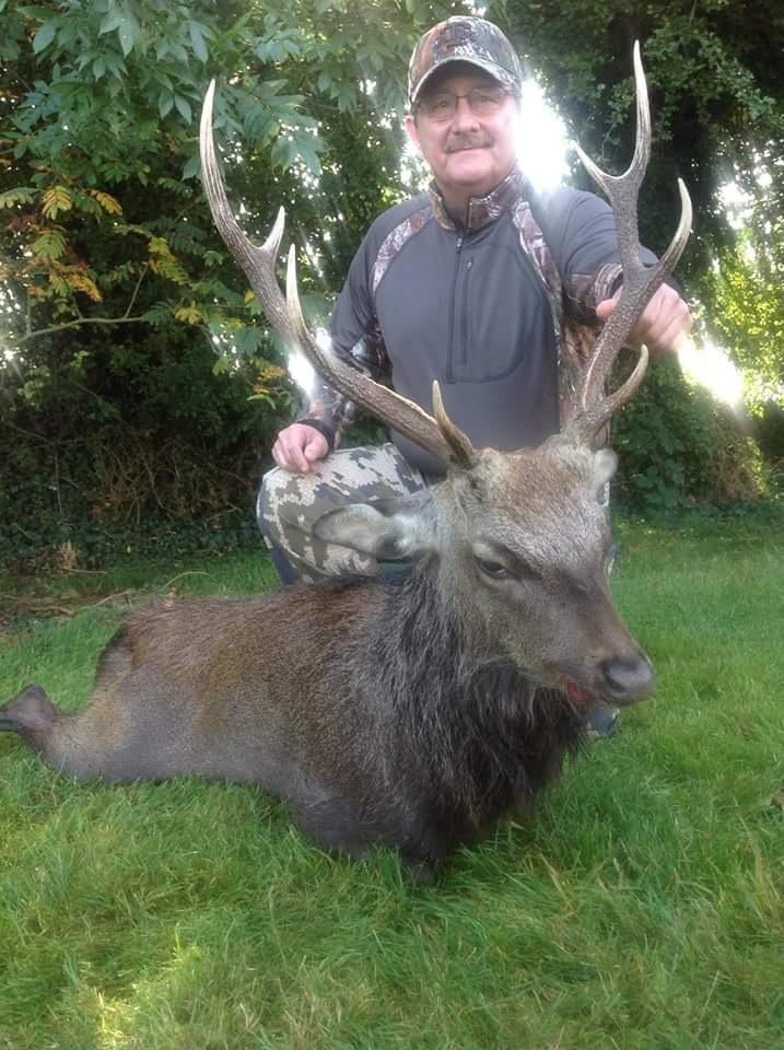 Sika Hunting Ireland (17).JPG