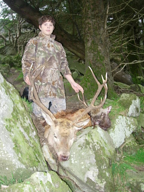 Wicklow Red Stag.jpeg