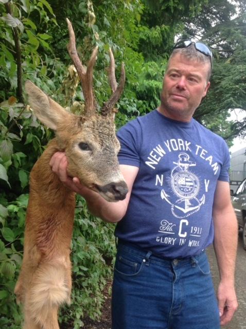 Roe Deer 2.jpeg