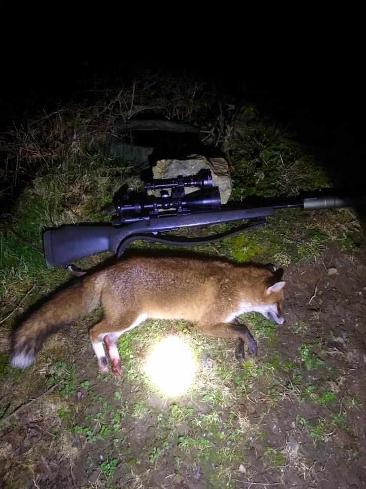 Irish Fox Hunt 2.jpeg