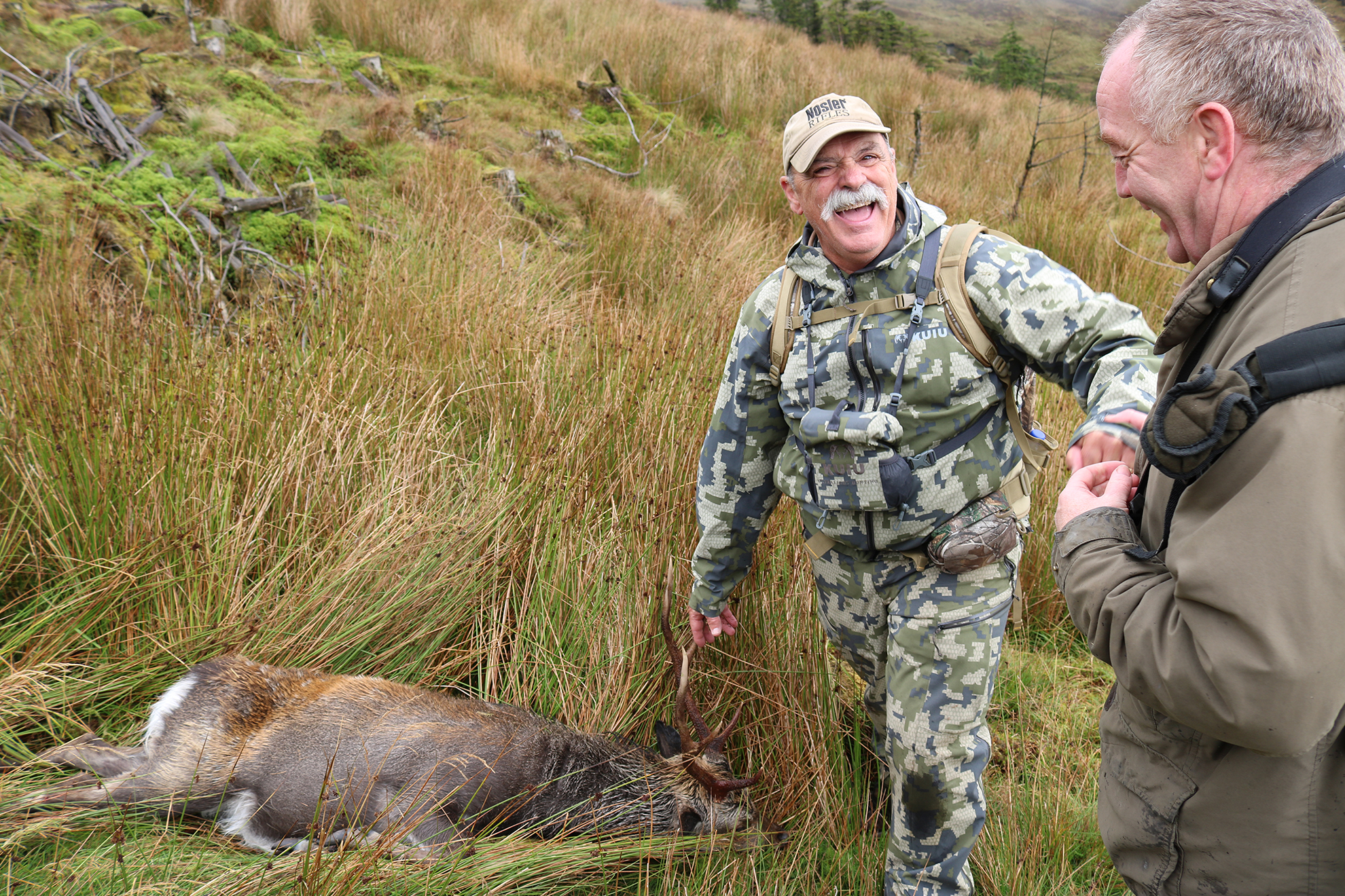 Sika Stag Ireland Success.JPG