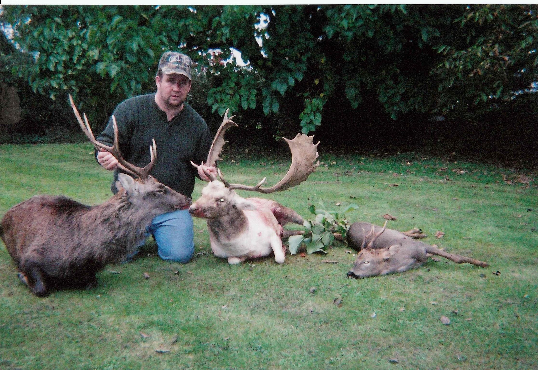 Fallow Deer Ireland  (15).jpeg