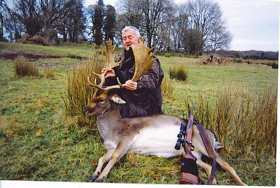 Fallow Deer Ireland 11 .jpeg