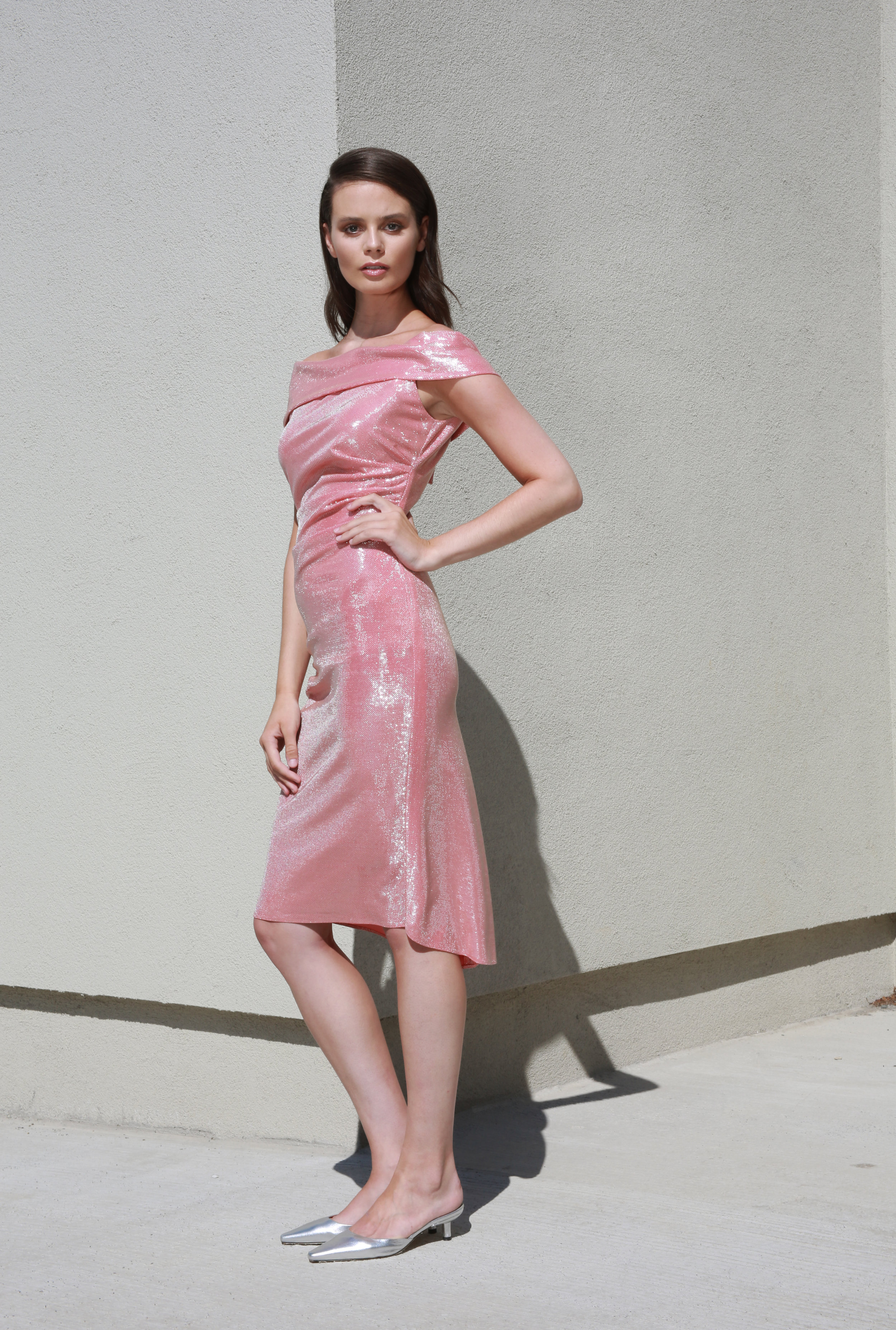 Collette Dress in Pink Shine €270.00