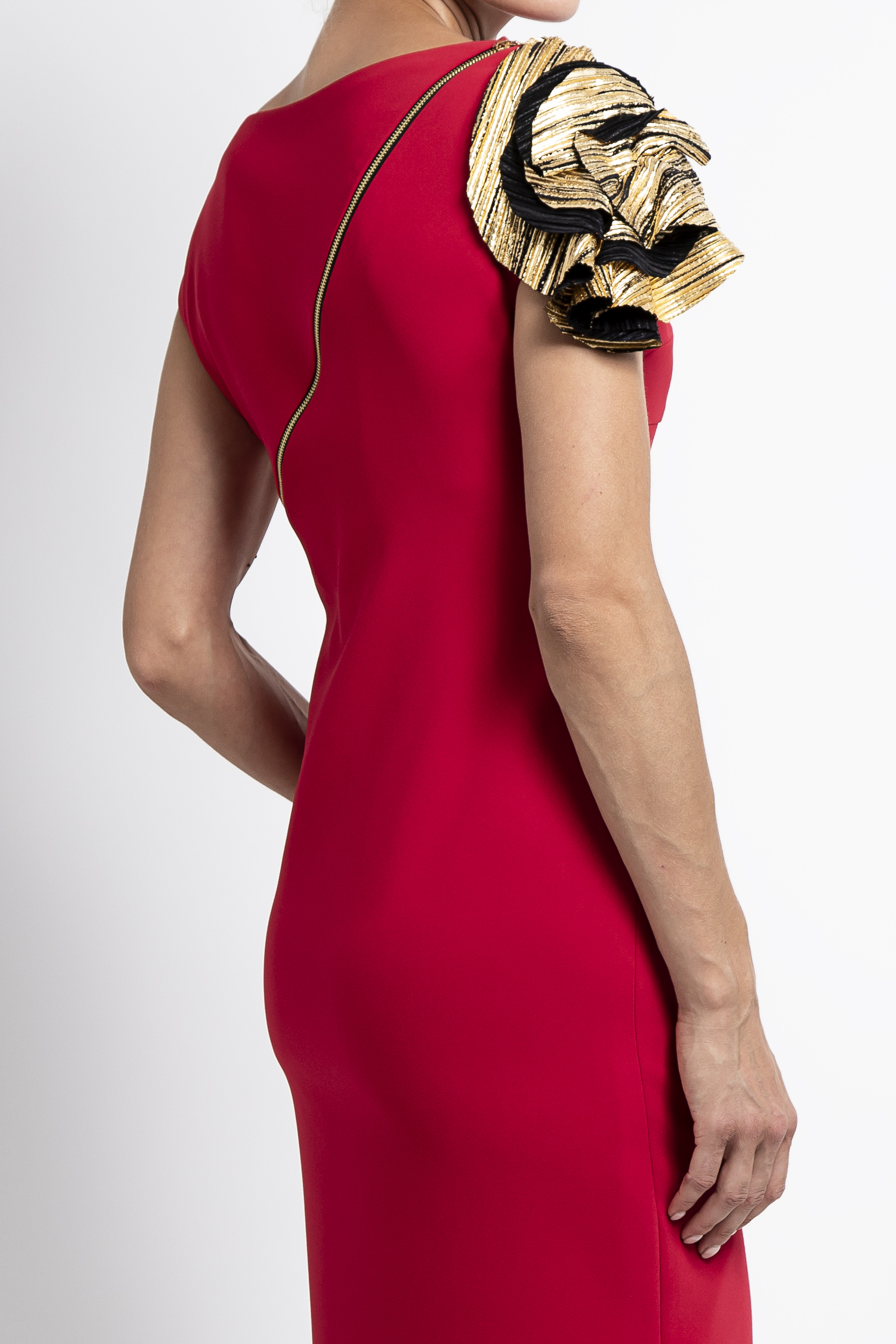 Charlotte Dress (Back View)
