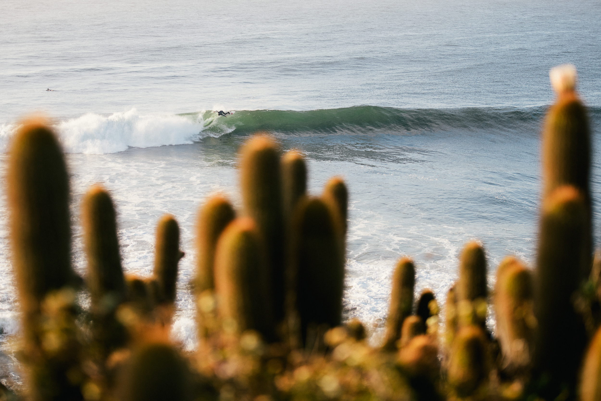 Chile-5.jpg